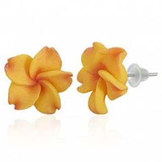 Puzetové FIMO náušnice - žltočervený kvet Plumérie AC05.01