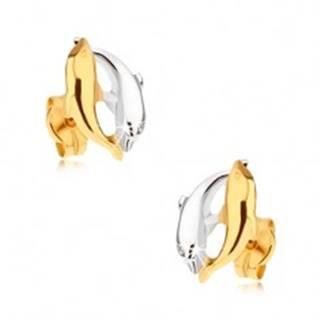 Ródiované dvojfarebné náušnice v 9K zlate - dva skáčuce delfíny