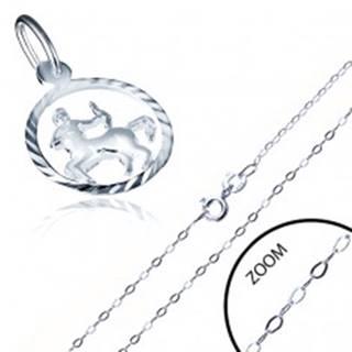 Strieborný náhrdelník 925 - jemná retiazka a prívesok znamenia STRELEC