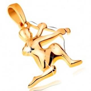 Dvojfarebný zlatý prívesok 14K - symbol znamenia zverokruhu - STRELEC GG195.39