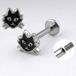 Oceľový labret striebornej farby - mačka s čiernou glazúrou