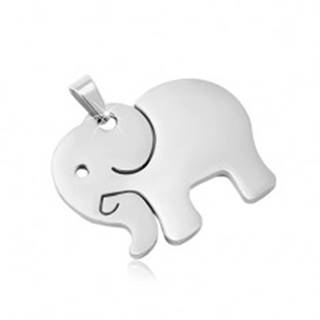 Prívesok z chirurgickej ocele v striebornom odtieni, matný slon s výrezmi