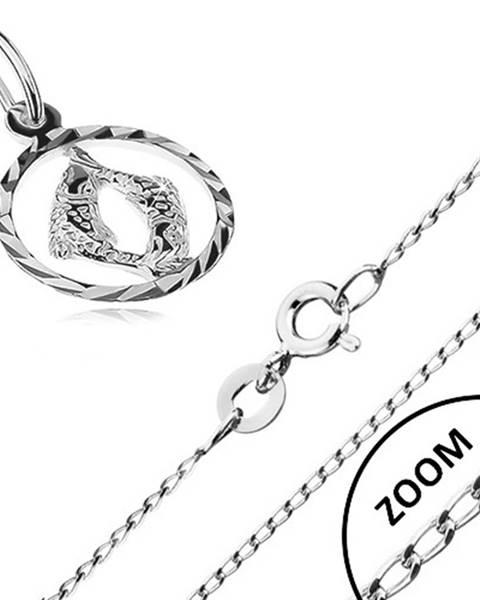 Strieborný náhrdelník 925 - lesklá retiazka, prívesok znamenia RYBY